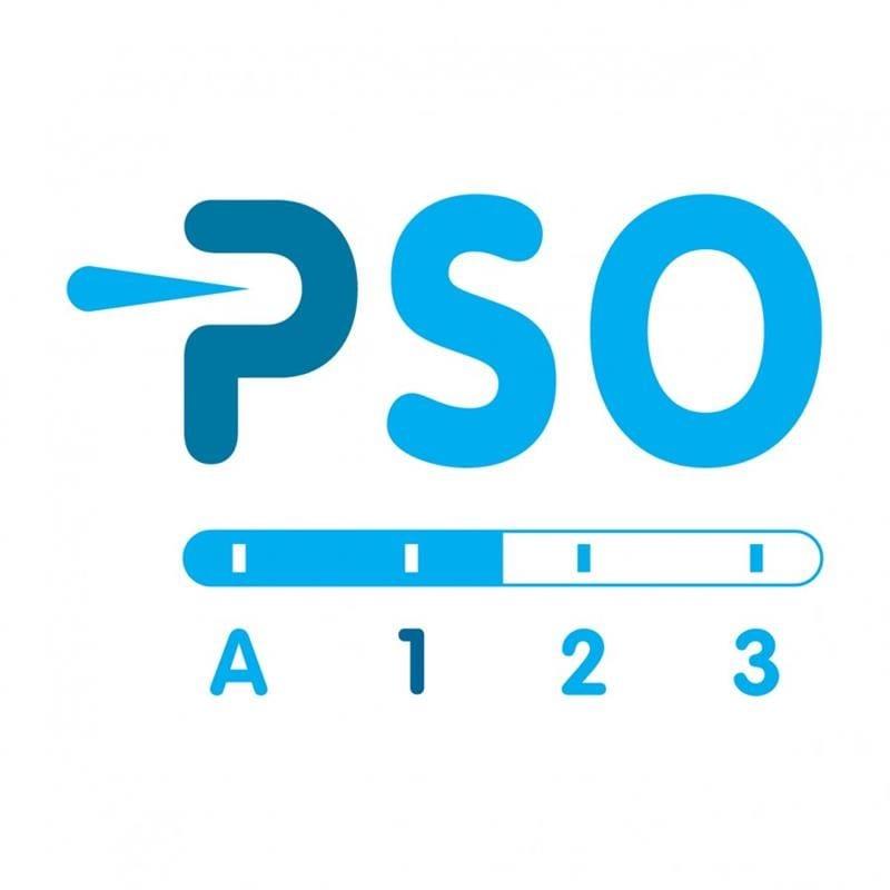 PSO Prestatieladder 002